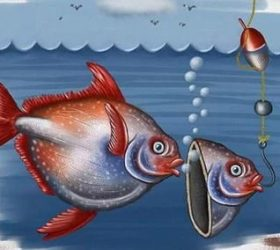 Ловись, рыбка! - загадки про рыб и других обитателей вод