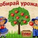 Загадки про урожай для детей