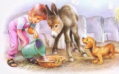 загадки про животных, про животных, про птиц, загадки про птиц, загадки, загадки про природу, про животный мир, для зверей, загадки детские, загадки для детского сада, загадкина ждя младших школьников,