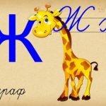 Стихи про букву Ж для детей