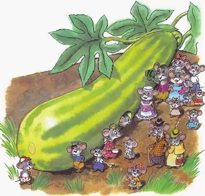 Греет овощ свой бочок! - загадки про кабачок для детей