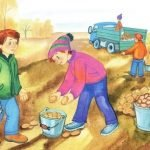Картошка в коротких стихах для детей