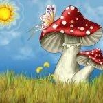 Виды грибов в веселых стихах для детей