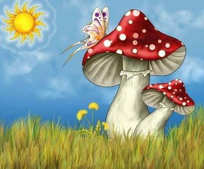 В лесу грибов не перечесть! - стихи про грибы по видам