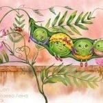 Бобовые в веселых загадках для детей