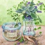 Зелень, травы, специи в загадках для детей