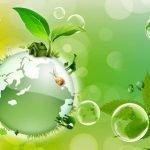 """""""Природа - наш общий дом!"""" - сценарий экологического мероприятия для школьников"""